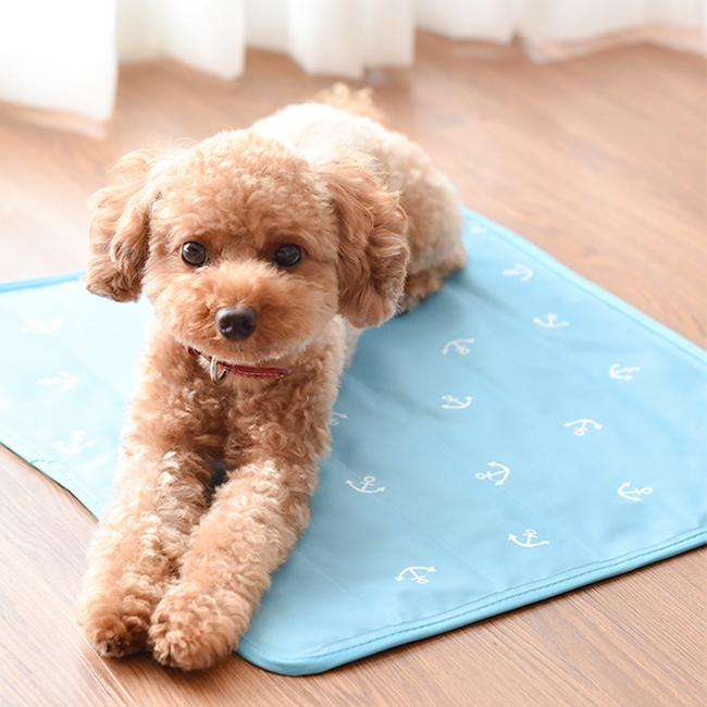 犬用夏ベッド クールマット ラディカ