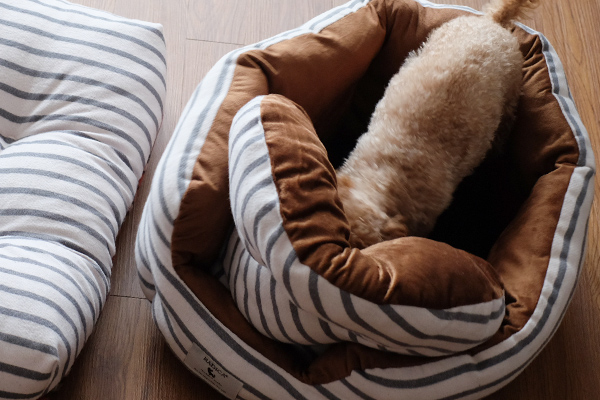 秋冬用犬用ベッド-ラディカ
